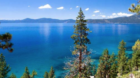 North Shore Lake Tahoe Homes For Sale